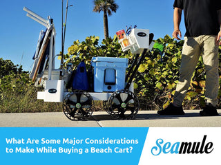 What Are Some Major Considerations To Make While Buying A Beach Cart?