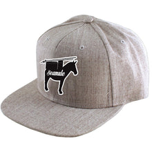 Heather Grey Snapback Hat