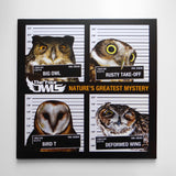 The Four Owls - Nature's Greatest Mystery (DOUBLE DISC / ORANGE VINYL)