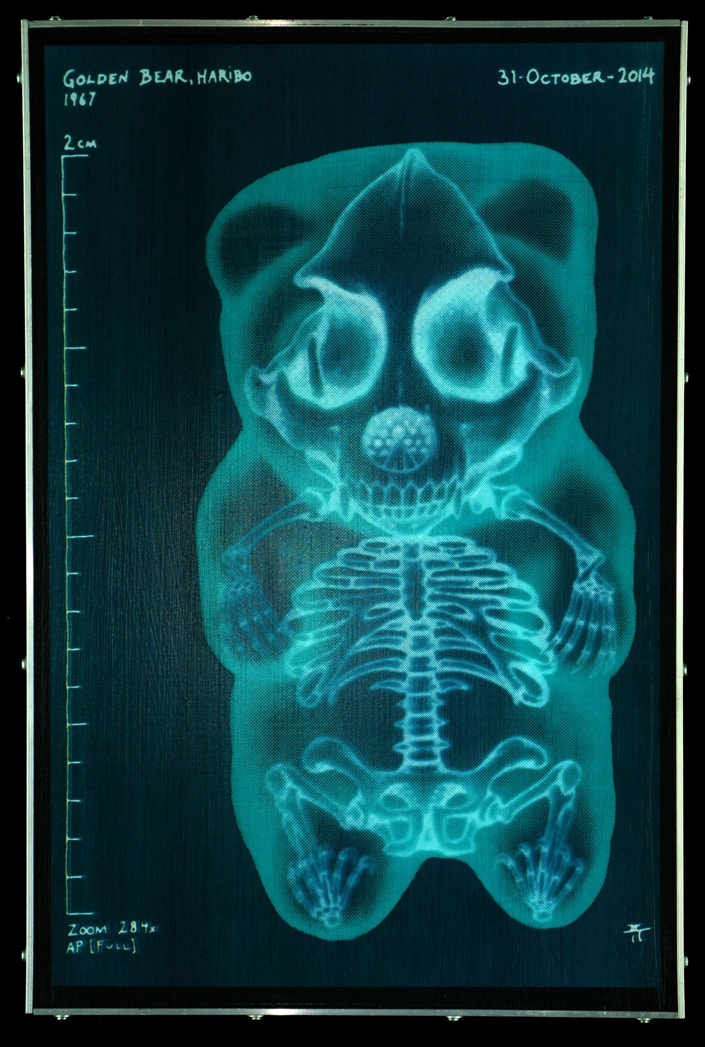 Confections of a Dangerous Mind - Gummy Bear X-Ray (-) on Wood