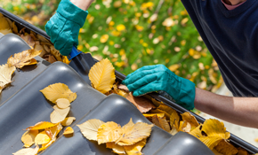Gutter Cleaning For Up To 3500 Sq. Ft. Home
