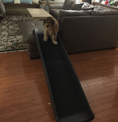 folding- pet -ramps- for- large- dogs