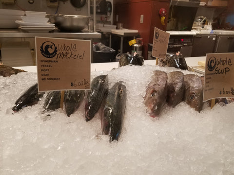 Atlantic mackerel on display at Whole foods fish can be used as fresh dead bait for tuna and striped bass fishing
