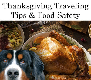 Thanksgiving Dog Traveling Tips & Food Safety