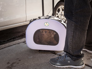 SHOP TRAVEL AIRLINE APPROVED PET CARRIERS