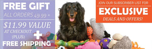 Free Gift with all orders on pet supplies