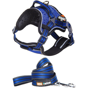 Dog Helios ® 'Journey Wander' Chest Compressive Sporty Adjustable Dog Harness and Leash Small Blue