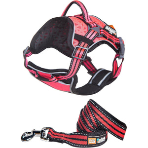 Dog Helios ® 'Journey Wander' Chest Compressive Sporty Adjustable Travel Pet Dog Harness and Leash Combination Small Pink