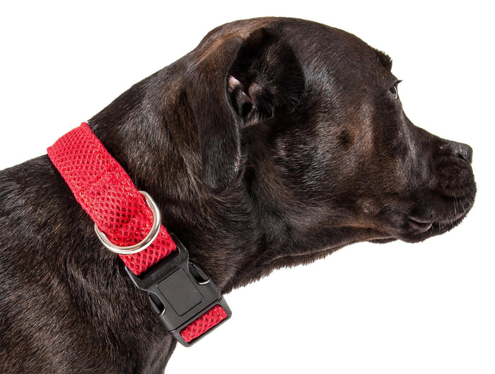 Pet Life ®  'Aero Mesh' Dual-Sided Breathable and Adjustable Thick Mesh Dog Collar