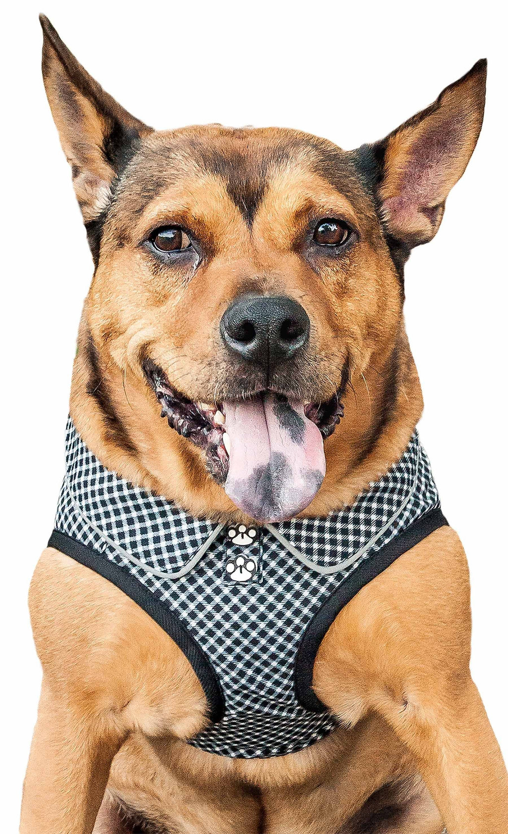 Pet Life ® 'Checkerwag' Checkered Mesh Reversed and Adjustable Fashion Dog Harness