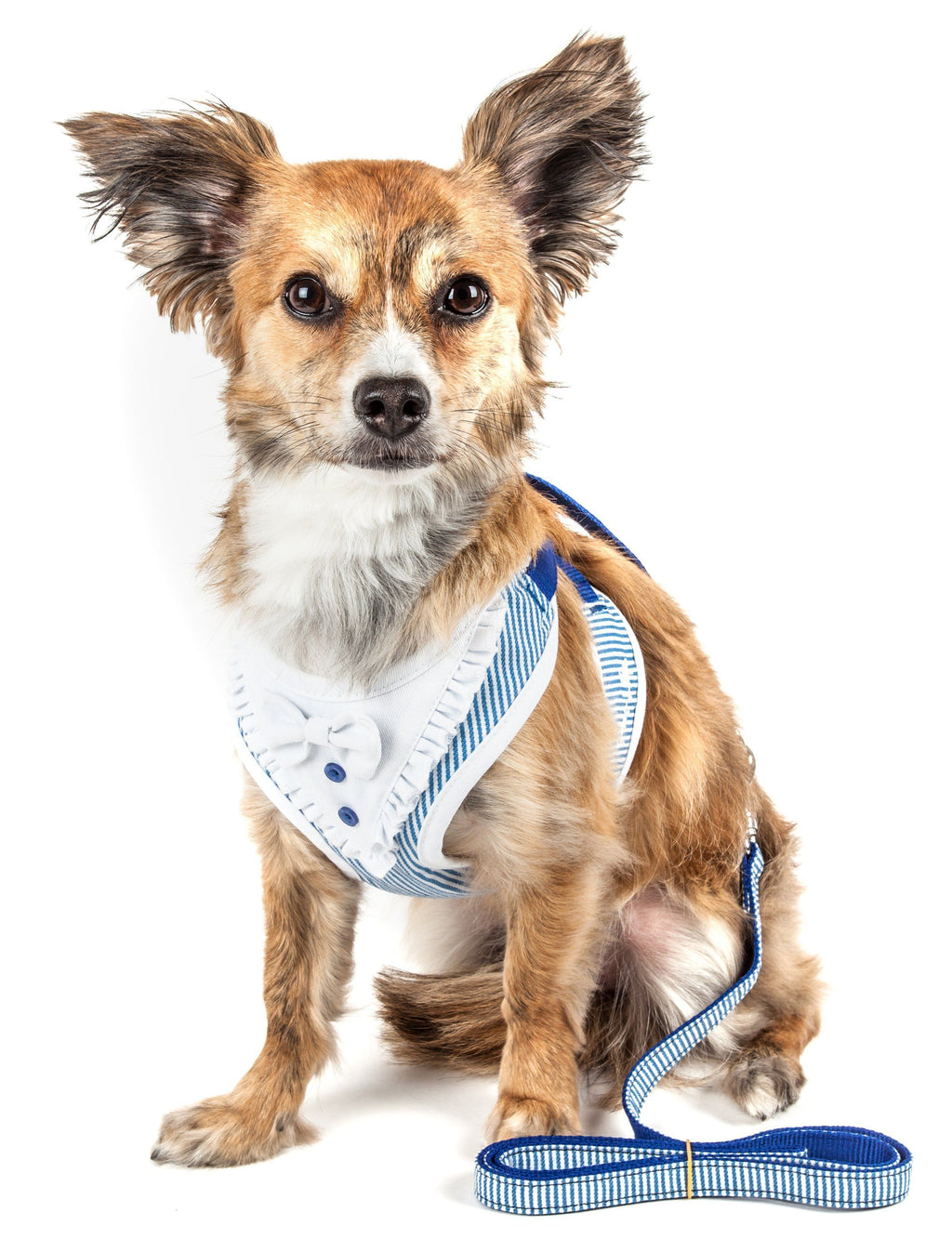 Pet Life ®  Luxe 'Spawling' 2-In-1 Mesh Reversed Adjustable Dog Harness-Leash W/ Fashion Bowtie X-Small Blue