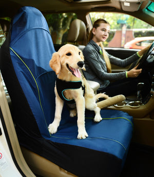 Pet Life ® 'Open Road' Single Seated Safety Child Pet Cat Dog Car Seat Carseat Cover Protector Blue