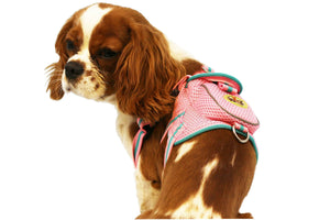 Pet Life ® 'Pocket Bark' Reflective Adjustable Fashion Pet Dog Harness w/ Velcro Pouch and Dual Harness Rings