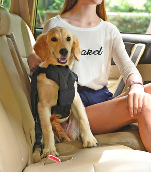 Pet Life ® 'Road-To-Safety' Pet Dog Carseat Harness Securer w/ Detachable Swivel Hook