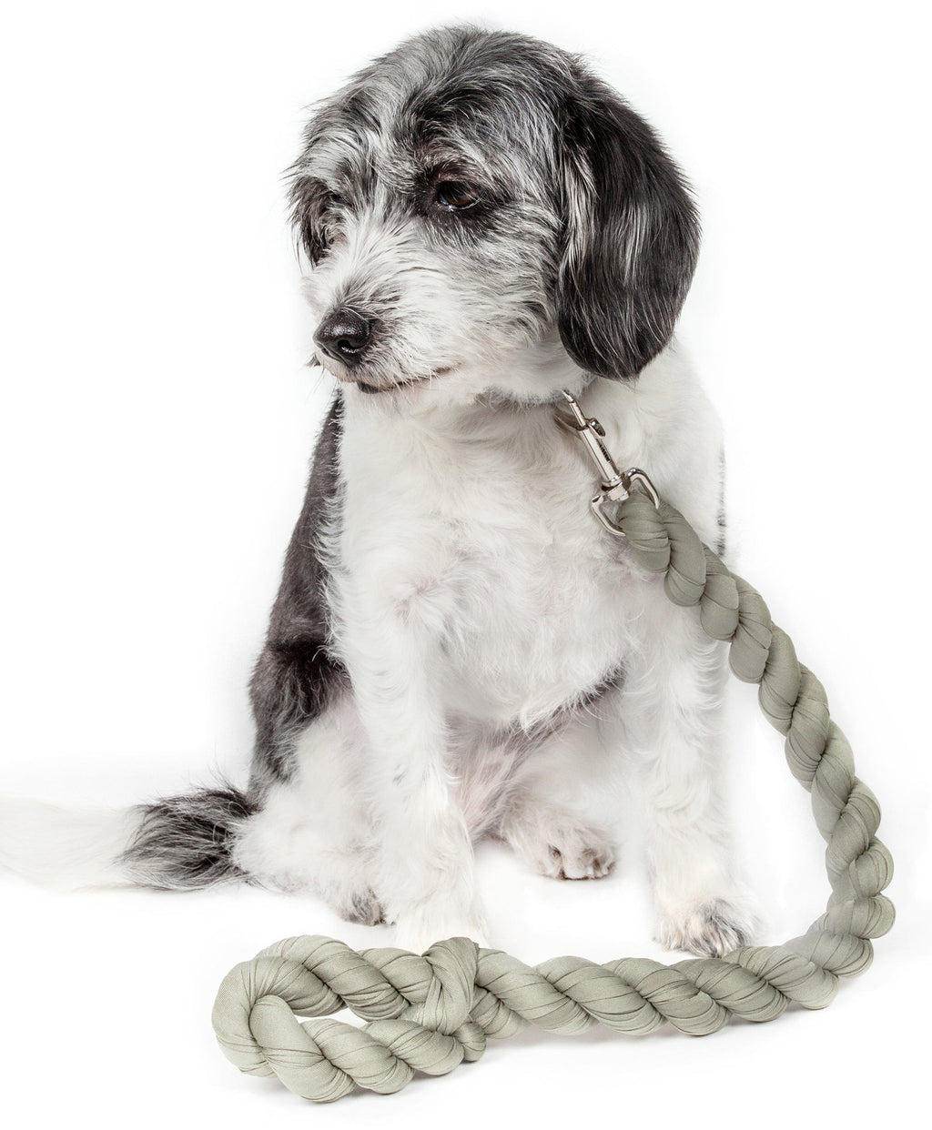 Pet Life ® 'Tough-Tugger' Industrial-Strength Shock Absorption Woven Pet Dog Leash Olive