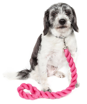 Pet Life ® 'Tough-Tugger' Industrial-Strength Shock Absorption Woven Pet Dog Leash Pink