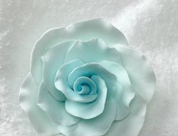 Formal Rose - Pastel Blue