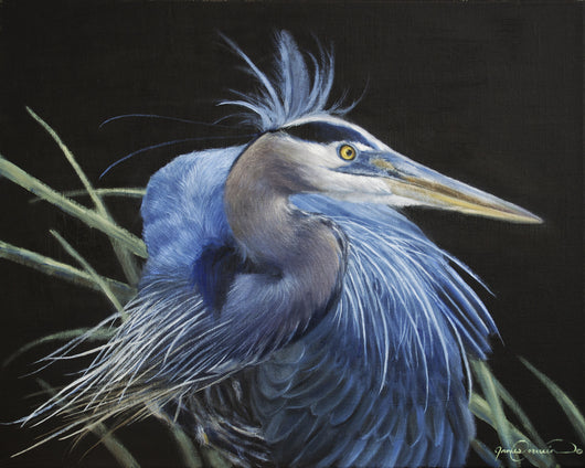 A great blue heron original oil painting by james corwin wildlife artist