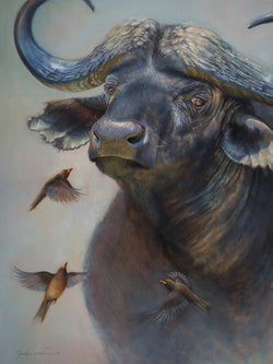 oxpecker birds bug an african cape buffalo original oil painting wildlife art