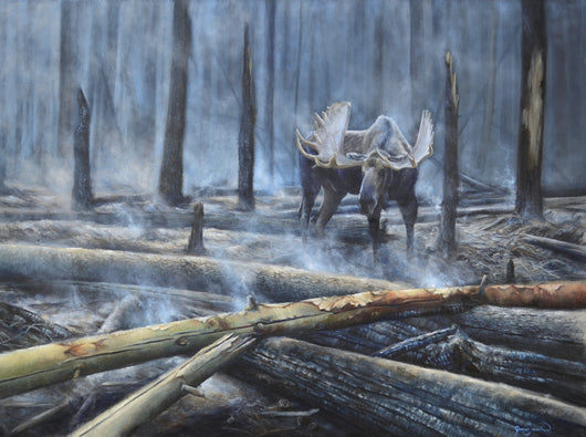moose wanders home to a forest smoldering after fire wildlife painting art by james corwin