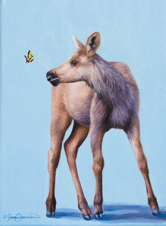 a baby moose curiously watches a tiger swallowtail butterfly oil painting by james corwin wildlife artist