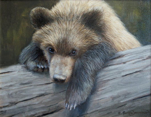 cute grizzly bear cub hanging on log wildlife painting by james corwin fine art