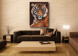 sumatran tiger portrait limited edition art print hanging in room