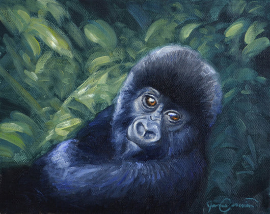 A baby mountain gorilla nestles in some jungle foliage. This painting was inspired by the documentary Virunga. wildlife painting by james corwin fine art
