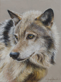 portrait of a wolf painting print canvas wildlife art by james corwin fine artist