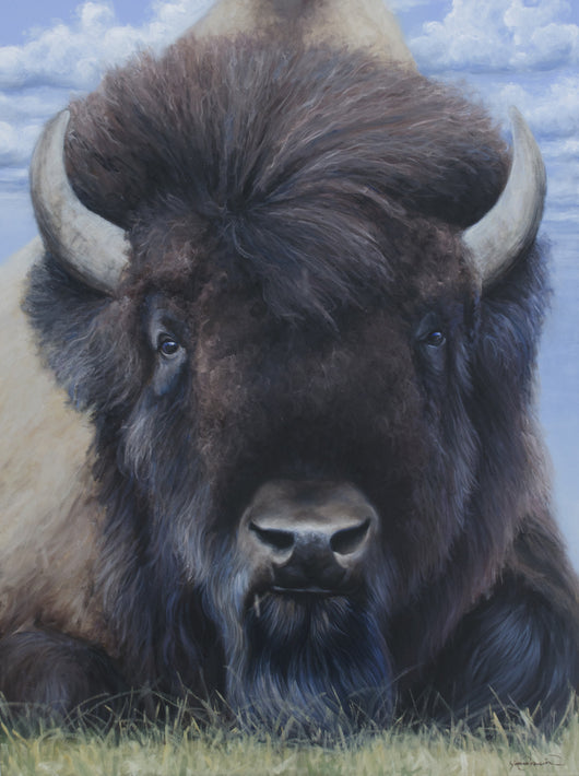 A portrait of an American bison (buffalo) regally rests, claiming his throne as Prince of the Plains wildlife painting by artist james corwin