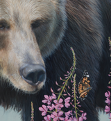 Nonchalance - Grizzly Bear - 30x40 Oil on canvas