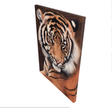 sumatran tiger portrait limited edition art print canvas