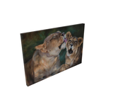 african mother lion grooms her cub art painting limited edition print on canvas
