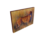 Cheetah oil painting fine art by james corwin wildlife artist limited edition print on canvas