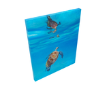 sea turtle ocean underwater painting by james corwin fine art wildlife artist print giclee