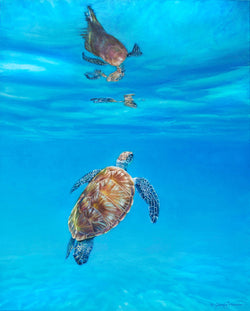 sea turtle ocean underwater painting by james corwin fine art wildlife artist