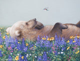 grizzly bear in wildflowers looking at hummingbird wildlife painting by james corwin fine art limited edition print