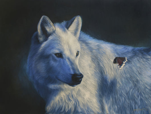 white wolf watches a mourning cloak butterfly pass by wildlife oil painting by fine artist james corwin