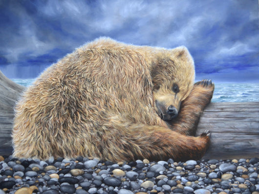 alaskan brown bear grizzly sleeps on beach during storms painting by wildlife artist james corwin