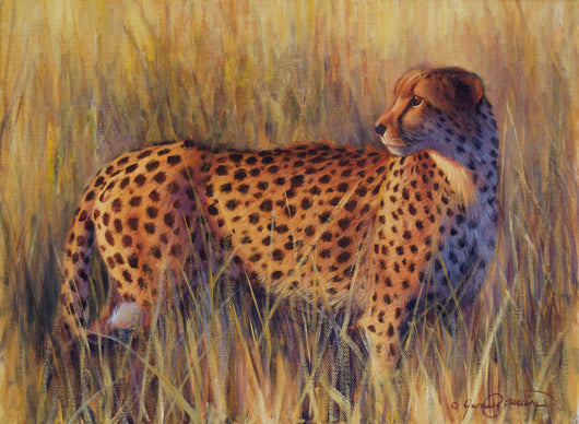 african cheetah wildlife painting by artist james corwin fine art