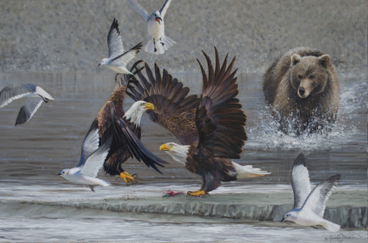 bald eagle brown bear alaska seagulls salmon wildlife painting fine art by james corwin artist