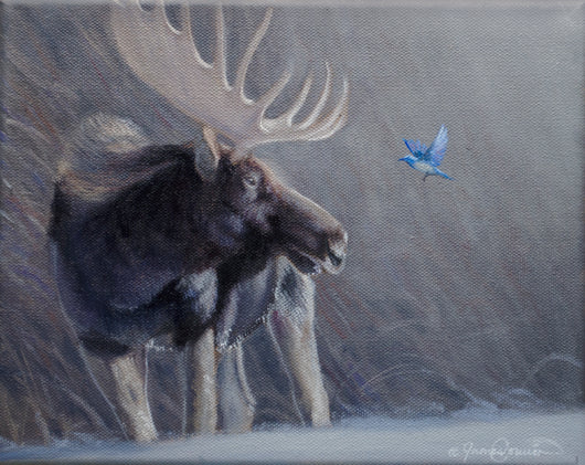 bull moose and mountain bluebird oil painting by james corwin wildlife artist