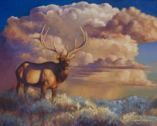 elk oil painting with thunderhead by montana wildife artist james corwin fine art