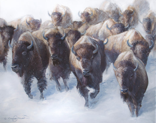 bison march in winter snow silent wildlife western art by james corwin fine artist
