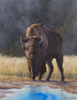 a bison in yellowstone stands by a hot pool with a magpie on its back oil painting by james corwin wildlife artist