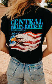 Harley Desert Sunset Crop