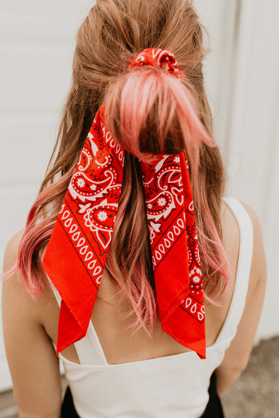 Gone West Scarf Pony
