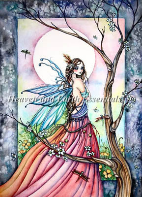 Dragonflies Whisper - Heaven and Earth Designs