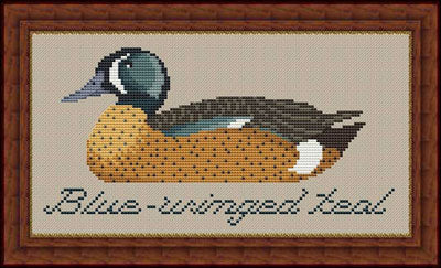 Blue Winged Teal - Whispered by the Wind
