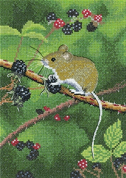 Wood Mouse, Nigel Artingstall Wildlife - Heritage Crafts
